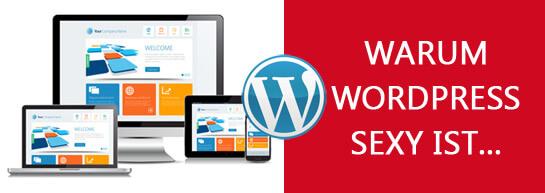 10 Gründe, warum WordPress sexy ist...