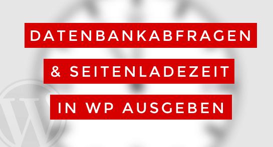 datenbankabfragen-ladezeit-wp-ausgeben
