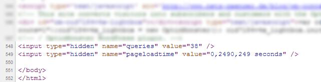 WordPress Seitenladezeit und Anzahl Datenbankabfragen ausgeben